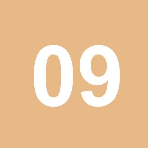 09 - hellbraun