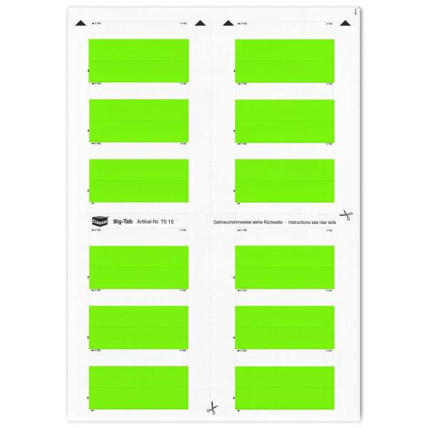 Big-Tabs grün