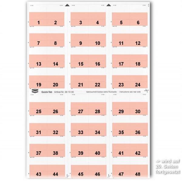 291007N Daten-Tabs mit Nr.-Druck 1-999/Serie=21Bla